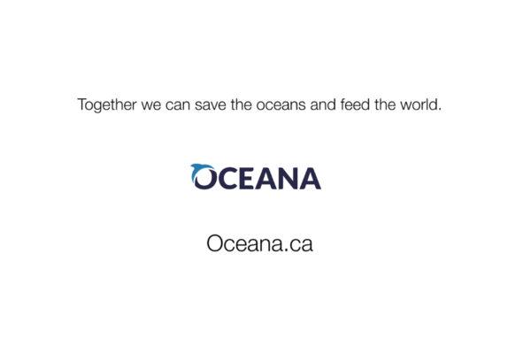 oceana-1-web