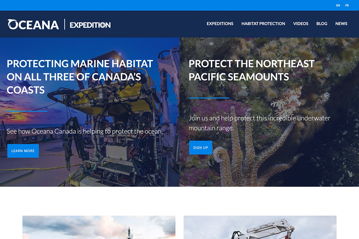 protect-oceans-web-2