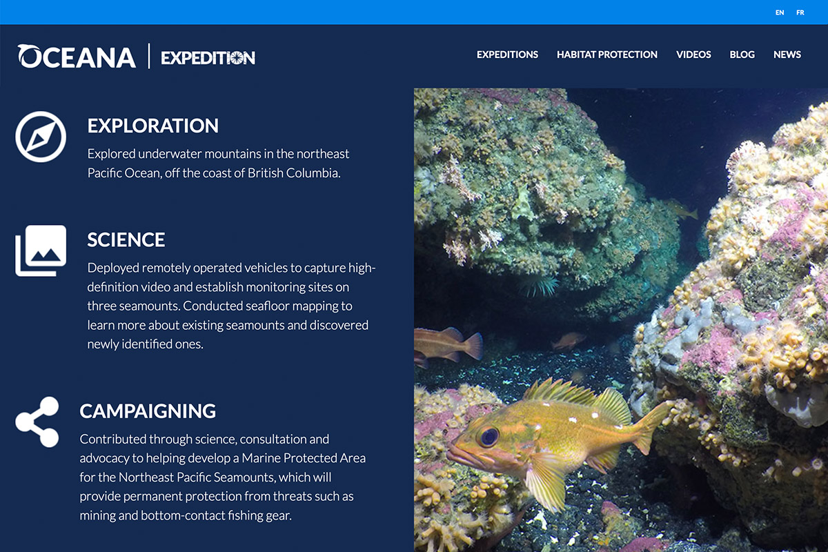 protect-oceans-web-5