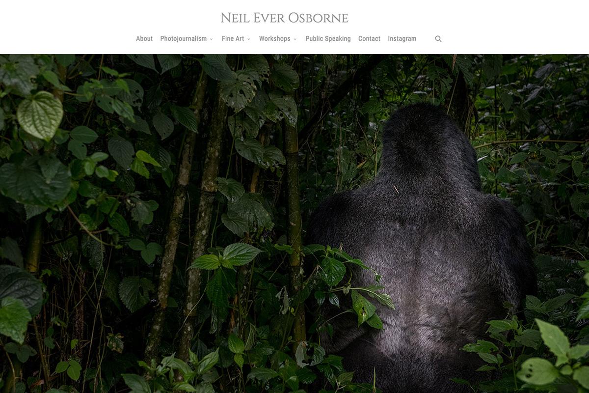 neil-ever-osborne-web-2