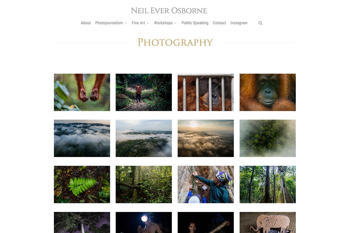 neil-ever-osborne-web-4