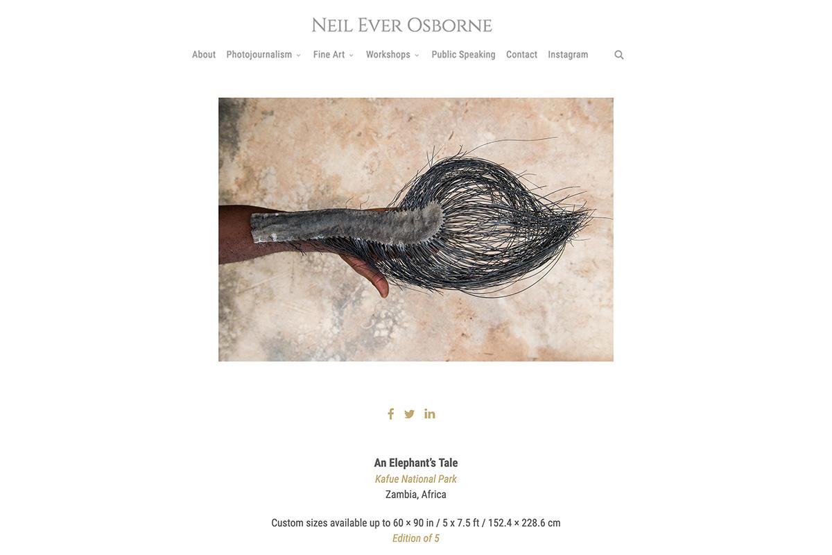neil-ever-osborne-web-6